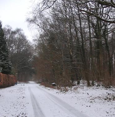 Snowjan7_1