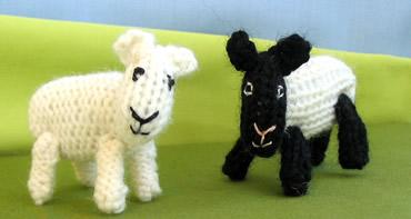 Sheep6_1