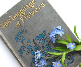 Flowerbook_1